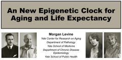 NMN对生理年龄逆转作用